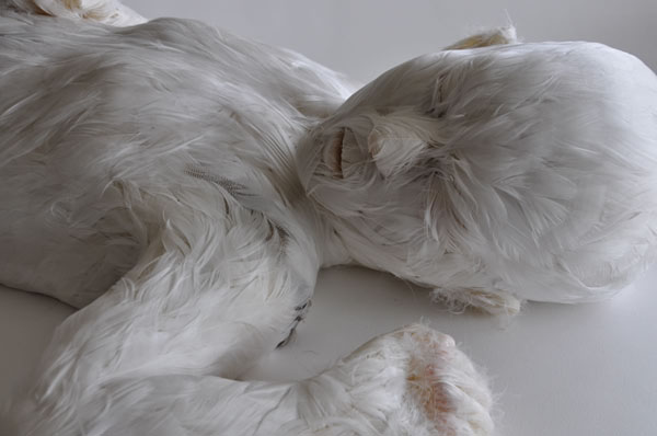 Lucy-Glendinning-Feather Child 600