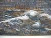 kiefer3-100.jpg